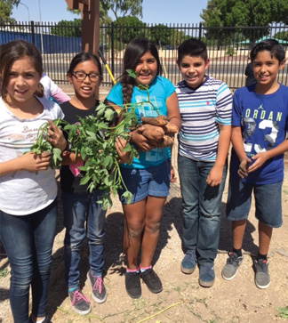 Students pose with a plant outside