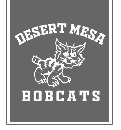 Desert Mesa Elementary Home