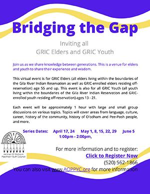 Bridging the gap flyer