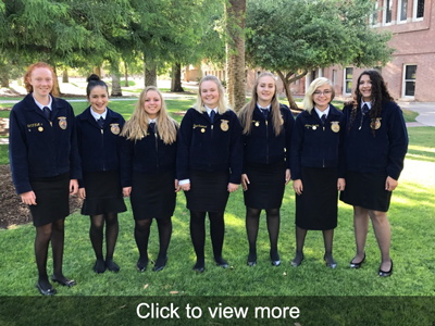 Click to view more photos of FFA in action