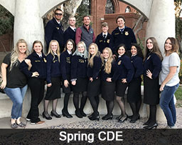 Spring CDE