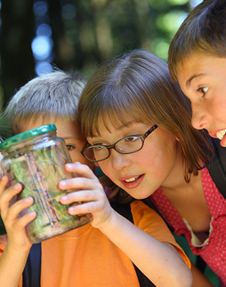 students looking at a bug in a jar
