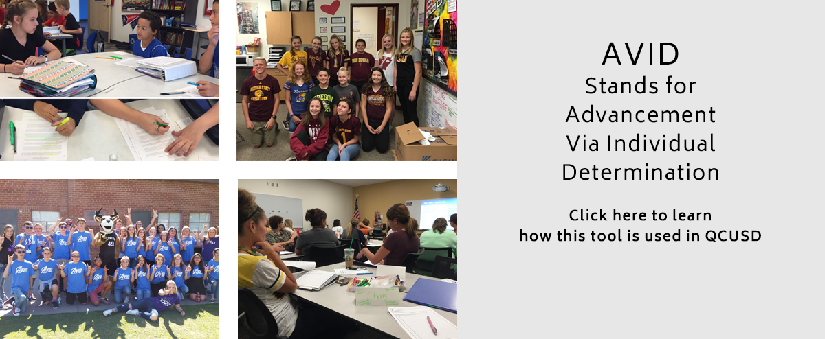 Learn More About AVID