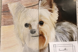 Student art contest entry of a dog